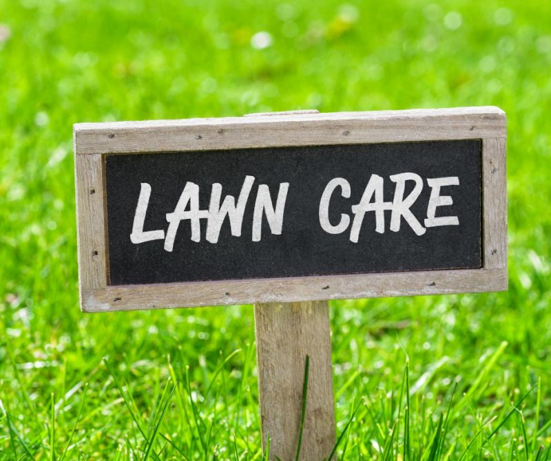 grass with a sign reading lawn care