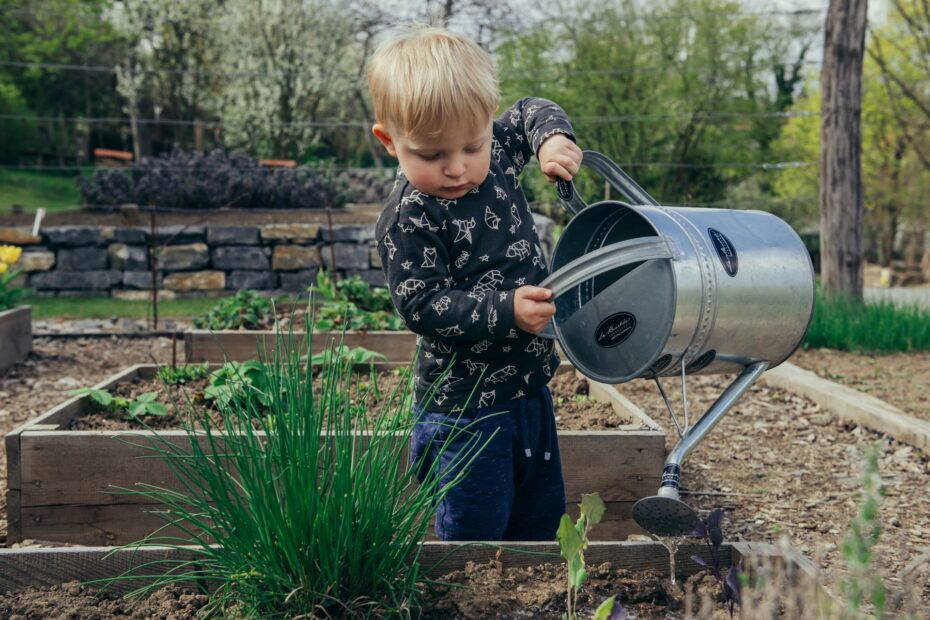 child watering garden with watering can