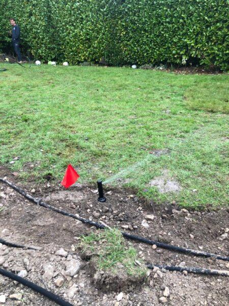 garden sprinkler in action