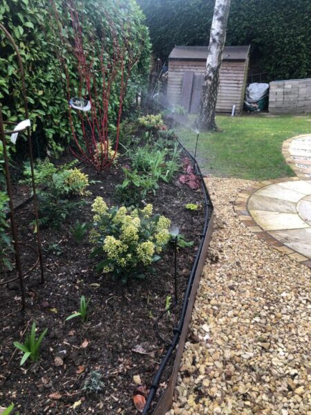 automatic water sprinkler in action